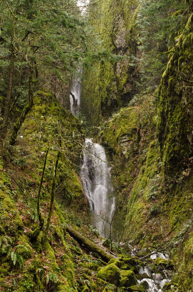 Pacific Creek Falls