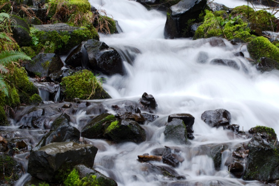 Below Wahkeena Falls
