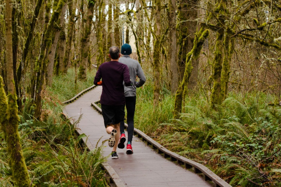 Runners along the trail
