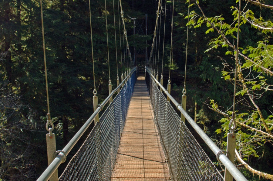 Drift Creek Suspension Bridge