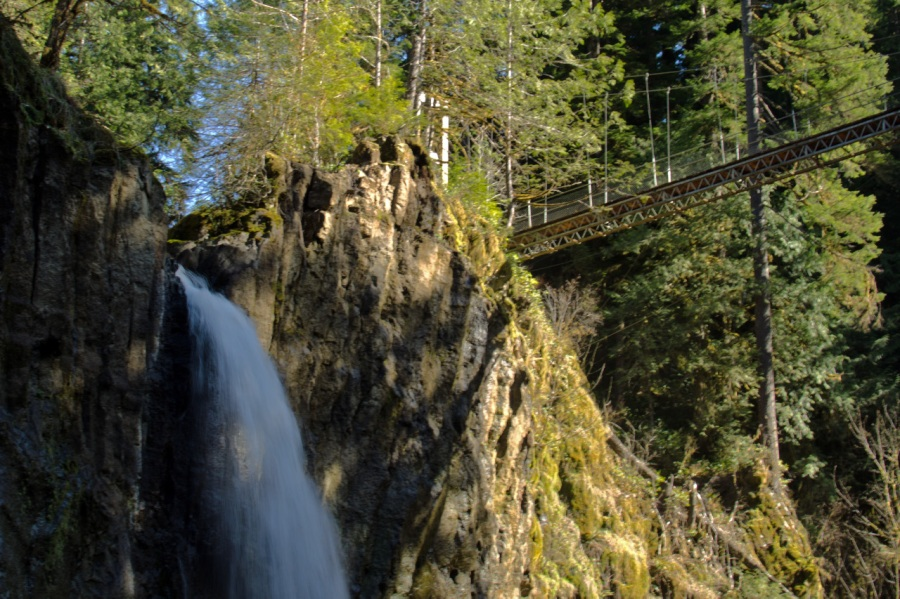 Top of Drift Creek Falls and beginning of suspension bridge