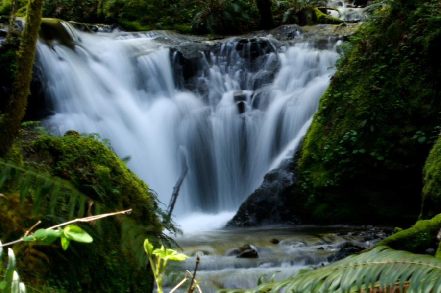 Waterworks Falls on Gorton Creek