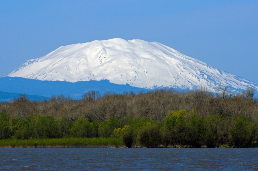 Mt. St. Helens across Sturgeon Lake