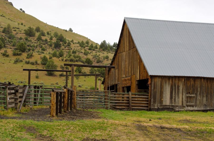 Barn near B&B