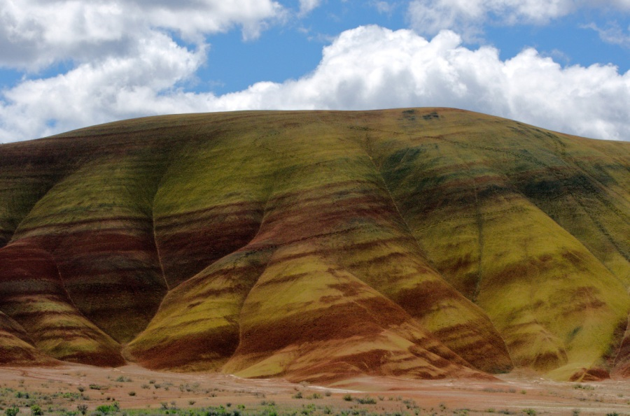 Shadows on the Painted Hills