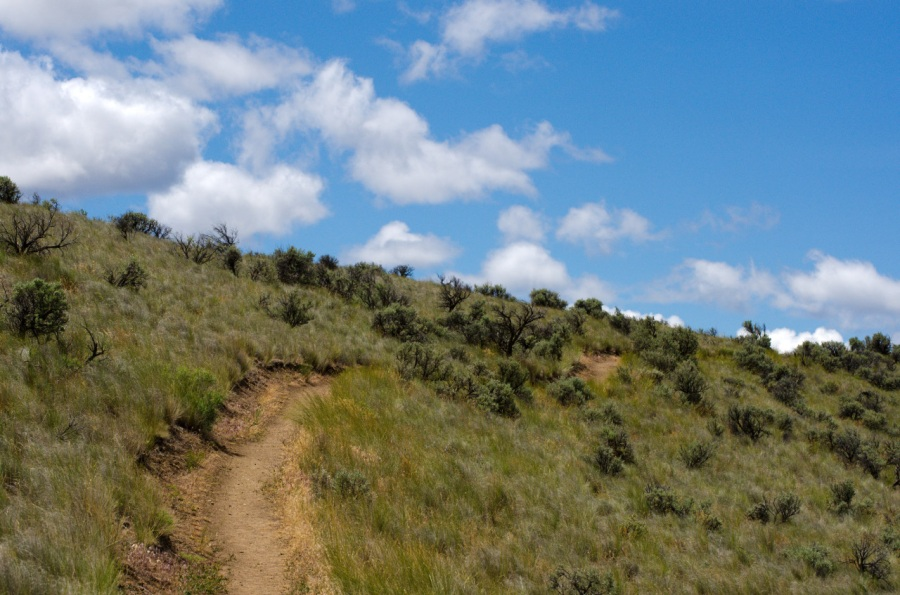 Trail leading to the Carroll Rim