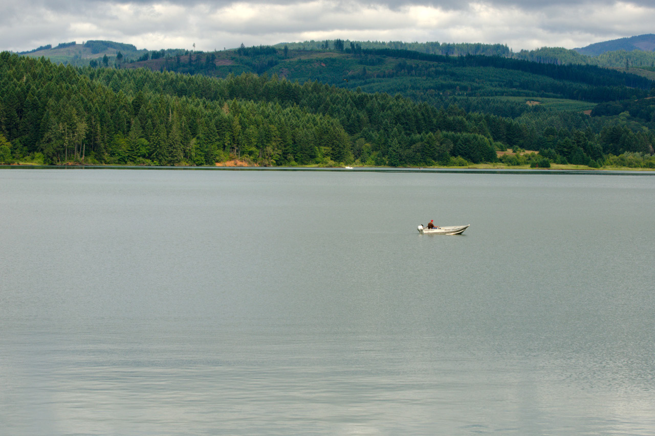 Early summer trek around henry hagg lake john carr outdoors for Henry hagg lake fishing