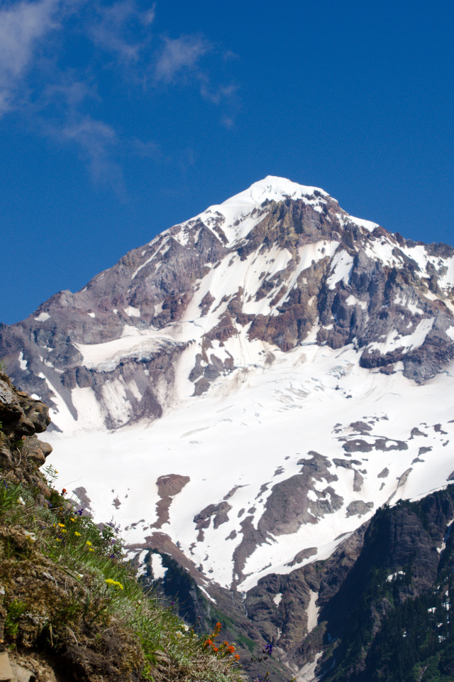 Mt. Hood towering over Bald Mountain