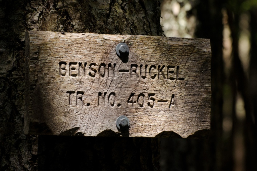 Old trail sign on the Benson Plateau