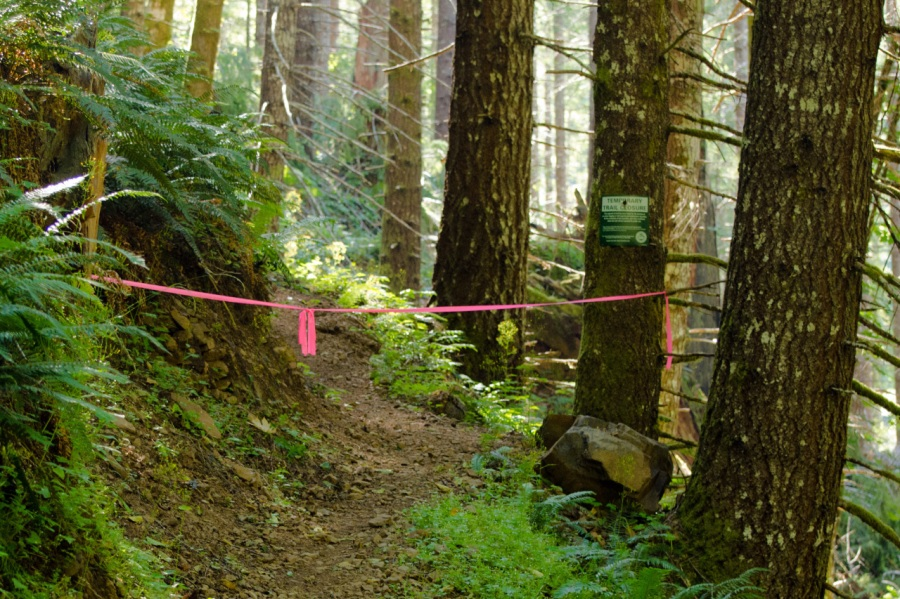 Trail closed due to logging