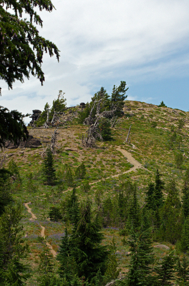 Summit-approach trail to Lookout Mountain