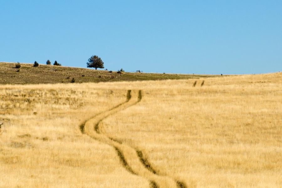 Rough ranch road