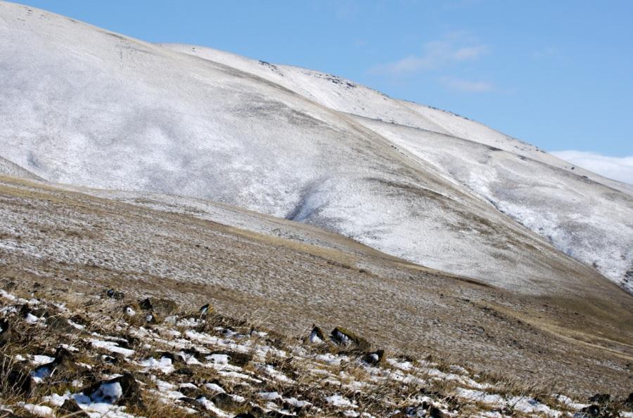 A fresh skiff of snow
