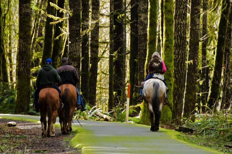 Equestrians enjoying the rail to trail