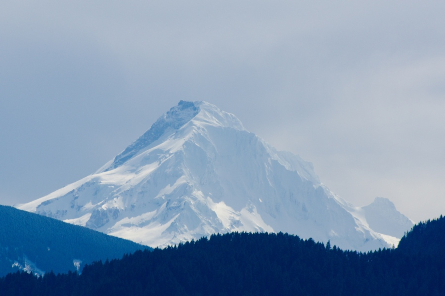 Mount Hood covered in a fresh snowfall