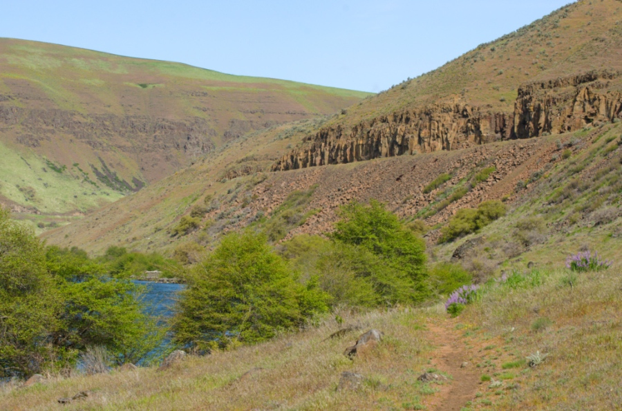 Deschutes River Canyon