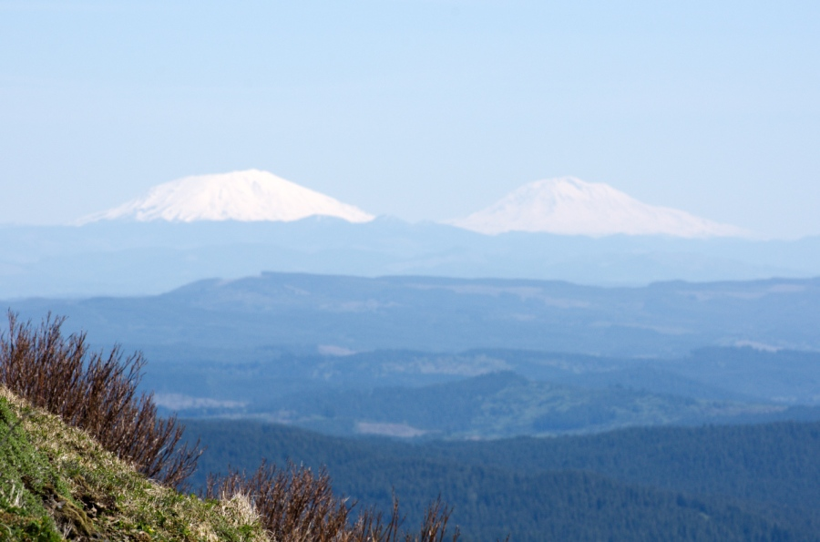 Mt. St. Helens and Mt. Adams from the summit area