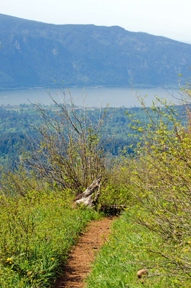 Columbia River as seen from the lower summit