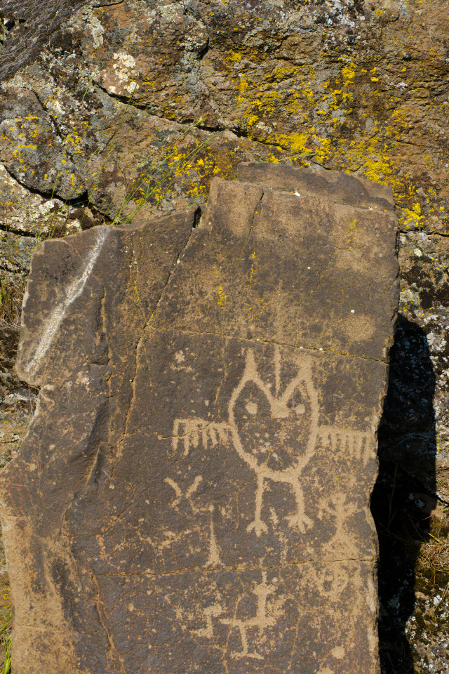 Petroglyphs at Horsethief Butte