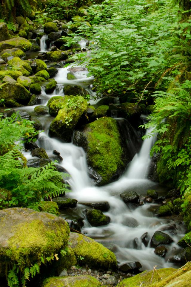 Tributary creek (4 second exposure)