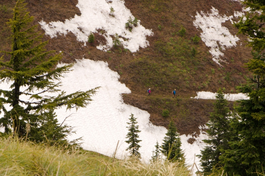 Hikers heading back to Timberline Lodge