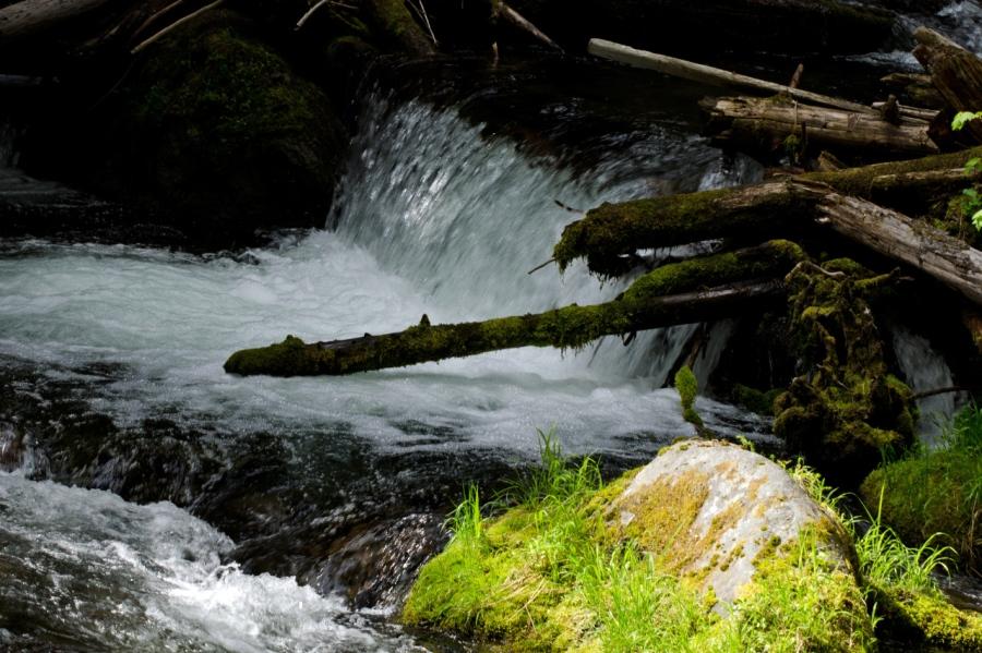 Tamanawas Creek