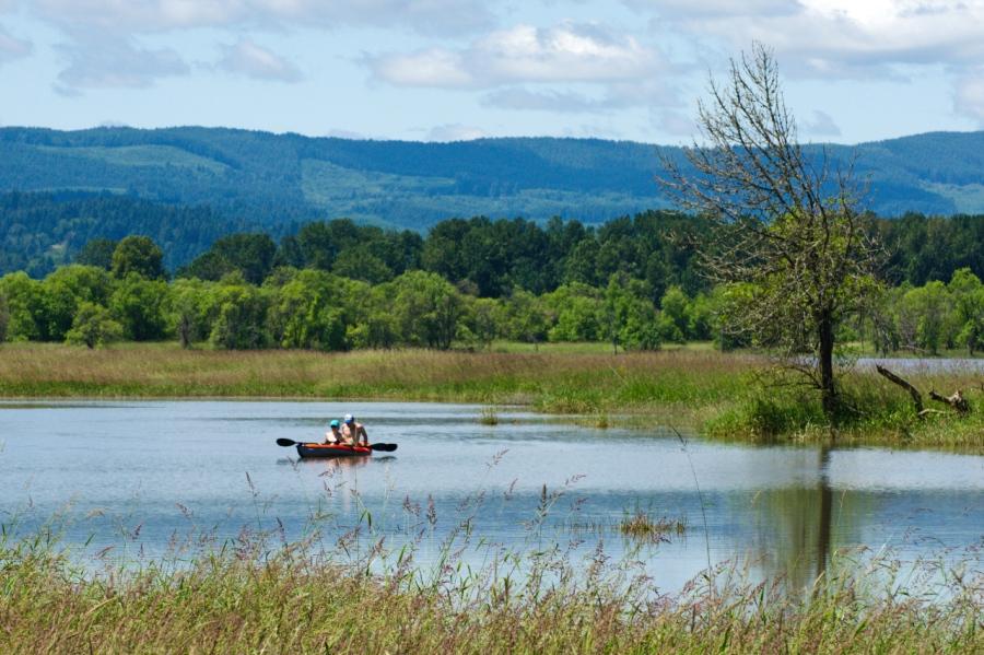 Kayakers on Sturgeon Lake