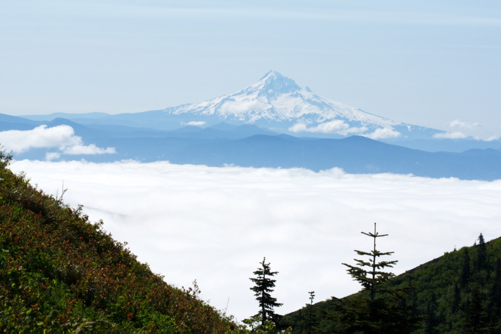Mt. Hood setting on top of low-lying clouds