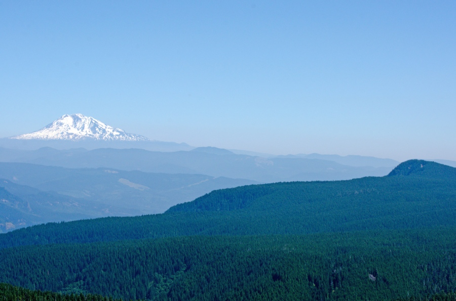 Snow-covered Mt. Adams and Nesmith Point (highest point in the cliffs in the Columbia River Gorge)