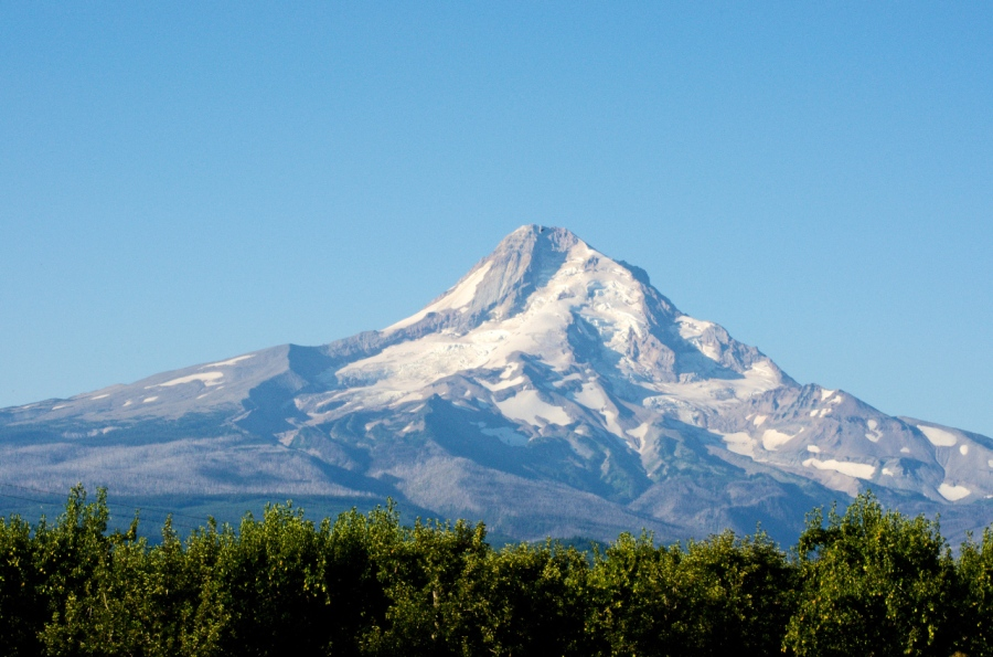North face of Mt. Hood in the early morning light (Cooper Spur on left)
