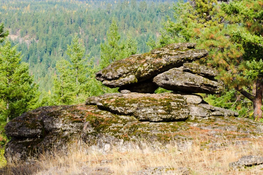 Pillowy basalt rock common to the area