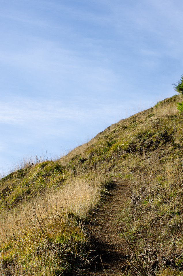 Steep section of trail to the top of Grassy Knoll