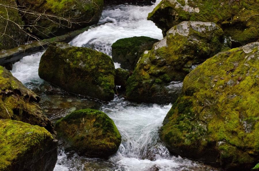 Cheeney Creek