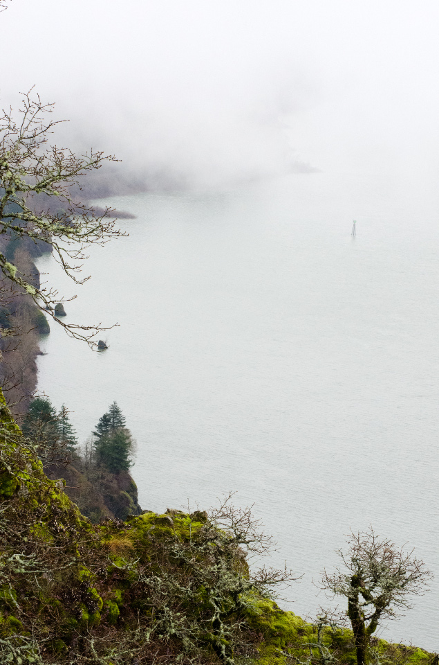 A foggy view up the Columbia River from the cliffs of Cape Horn