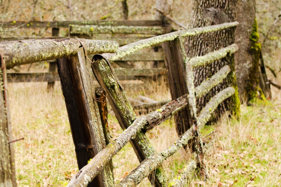 An old corral near the bottom of Catherine Creek