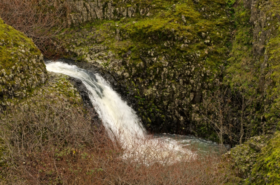 Small waterfall on Catherine Creek