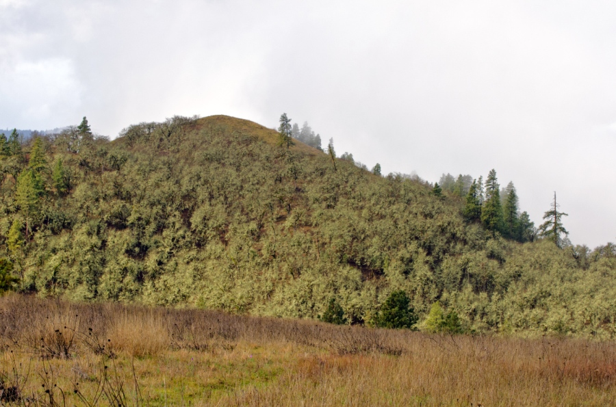 Lower Memaloose Hill