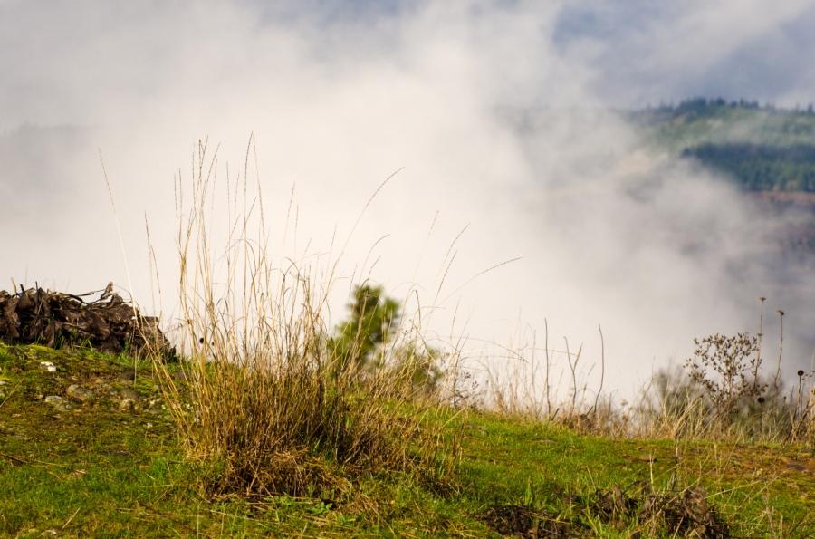 Clouds beyond Memaloose Hills