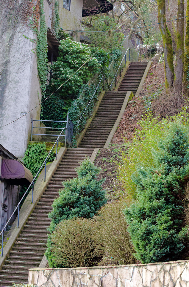 One of many flights of public stairs in Southwest Portland
