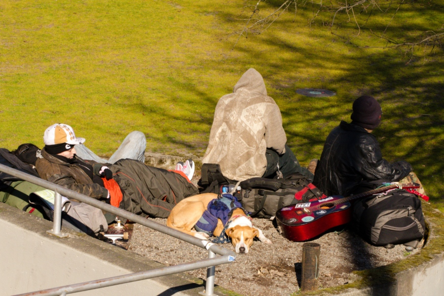 Homeless youths and Pit Bulls, a common sight in Downtown Portland