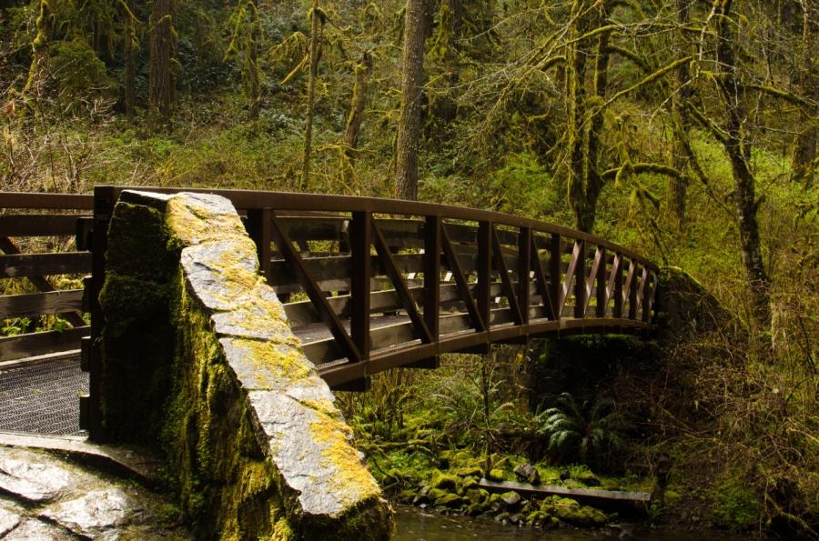 Footbridge over Sliver Creek