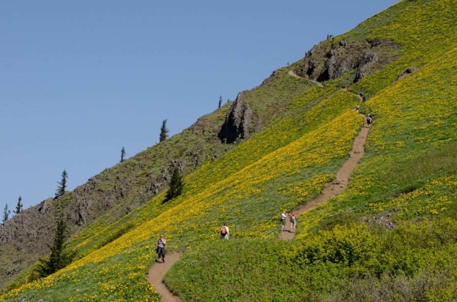 Hikers heading toward the summit