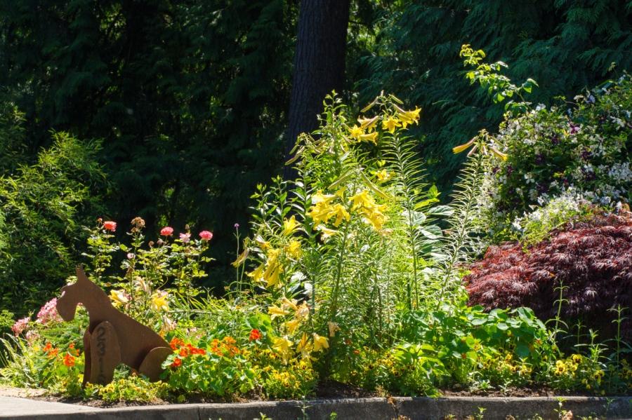 Nice sidewalk garden