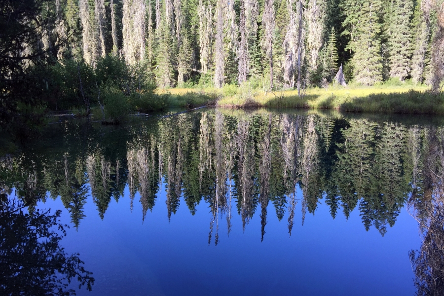 Reflections in Little Crater Lake