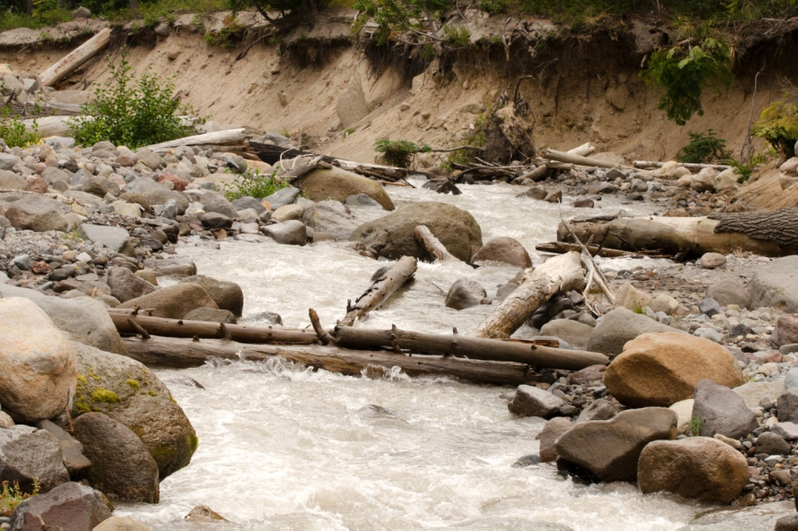 My log crossing over Newton Creek in the morning
