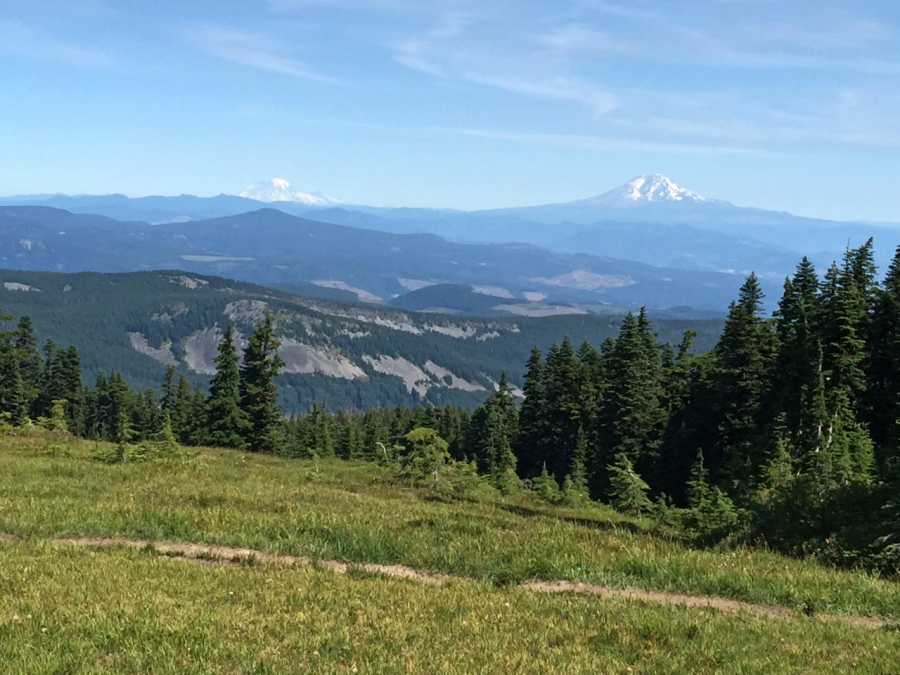 Mt. Rainier and Mt. Adams from Wy'east Basin