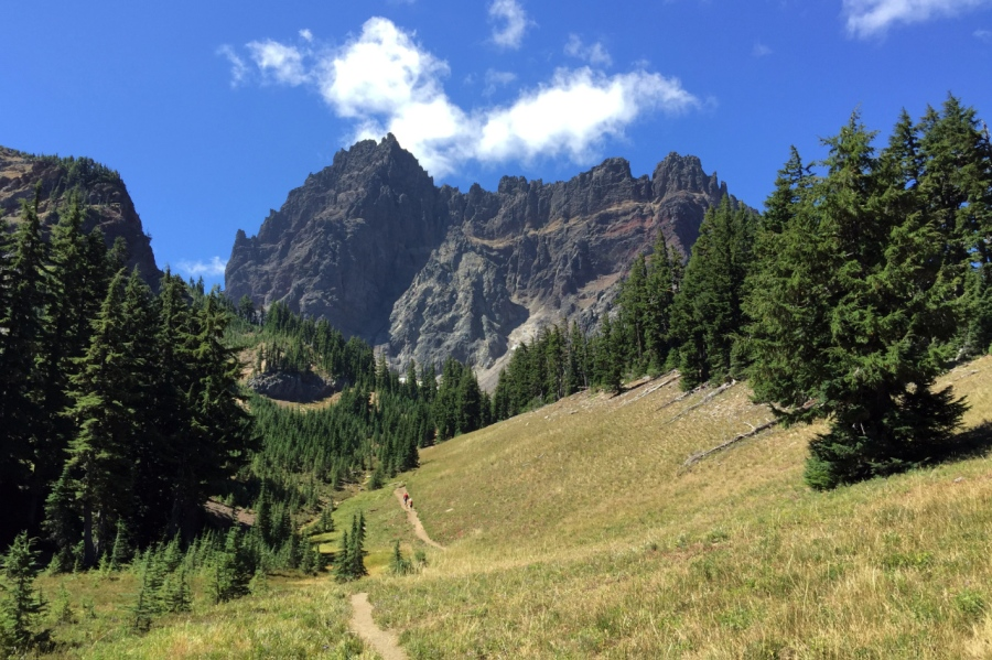 Trail leading through the meadows to Three Fingered Jack