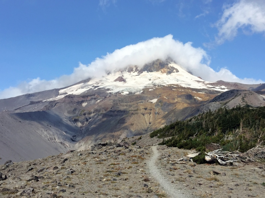 Mt. Hood's Timberline Trail on Gnarl Ridge