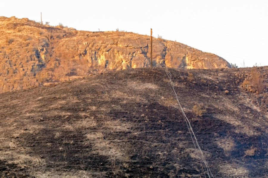Hillside burnt in last several hours