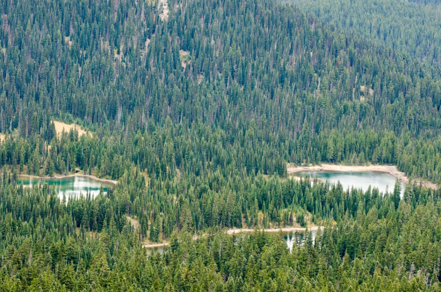 Blankenship Lakes